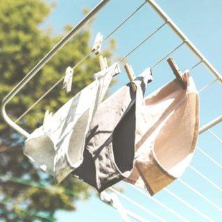 Après l'invasion de la cup pas évidente à manier, la culotte menstruelle révolutionne la manière de nous protéger pendant nos règles. Elle est saine, confortable, pratique, fiable et écologique. Suite au problème de choc toxique et l'opacité concernant la composition des protections hygiéniques, limiter l'usage des tampons et serviettes me paraît évident. J'ai découvert les culottes menstruelles il y a quelques années. J'ai commencé avec un modèle de la marque Loop qui ne se fait plus, j'ai trouvé son utilisation vraiment pratique. Avec code promo. Lien dans la bio. . . . #wearegreenfr #culottesmenstruelles #regles #beauty @so_cup @blooming.rocks @sistersrepublicofficiel