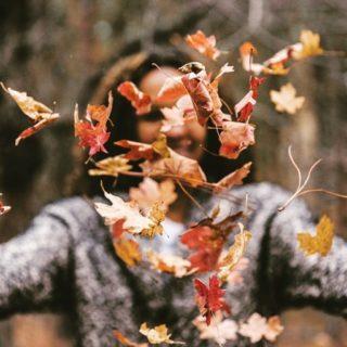 🍁 Déprime, rhume, grippe, fatigue… l'automne et ses contrariétés commencent à s'installer. Nous avons sélectionné quelques plantes et produits naturels qui vous permettront de passer la saison au meilleur de votre forme et préparer votre trousse parfaite pour affronter l'automne en toute sérénité. Lien dans la bio. . . . #wearegreenfr #fall #automne #pleineforme #sante #healthy #beauty #rhume #flu #grippe #prevention