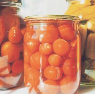 Pendant le processus de fermentation, l'action des bactéries transforme les sucres d'un aliment en acide lactique. Contrairement à d'autres méthodes de conservation, ce procédé permet de garder la fraîcheur et les vitamines des légumes. Il peut même augmenter leurs propriétés. Les aliments lacto-fermentés gardent leurs enzymes, ce sont des produits vivants et facilement assimilables par l'organisme. Avant les surgelés, avant les conserves, il y avait la fermentation lactique, une méthode de conservation ancestrale qui permettait de consommer, même au coeur de l'hiver, des produits aussi riches en vitamines et minéraux que s'ils étaient frais ! ➡️lien dans la bio. . . . #wearegreenfr #lactofermentation #5fruitsetlegumesparjour #healthy #mangersainement